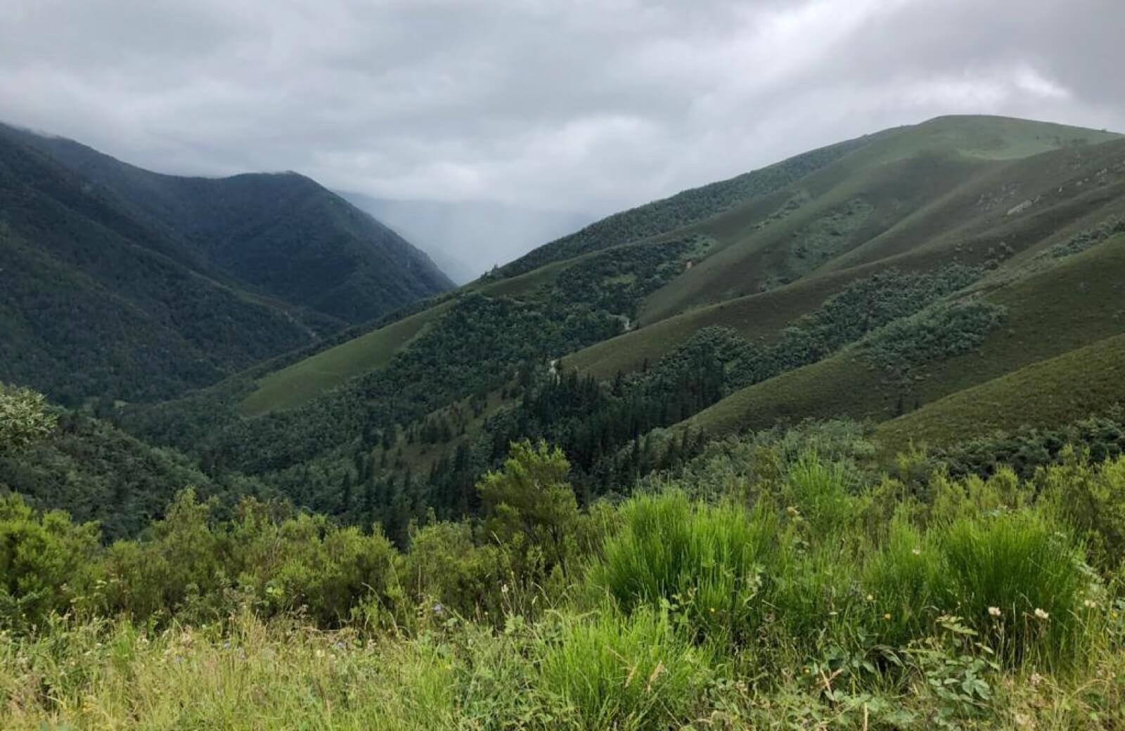 parque fuentes del narcea primavera en asturias