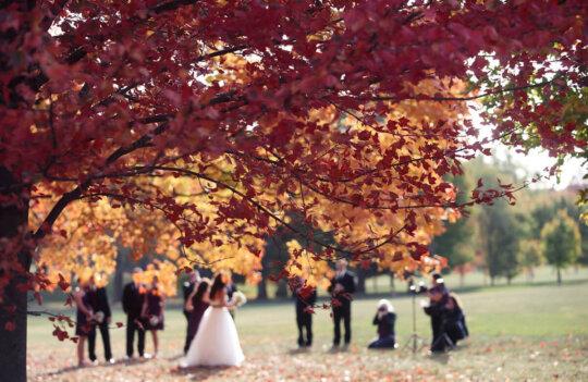 Celebrar en Asturias una boda en otoño: ventajas y consejos