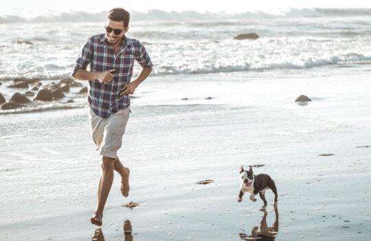 Playas para perros en Asturias: dónde puedo ir con mi mascota