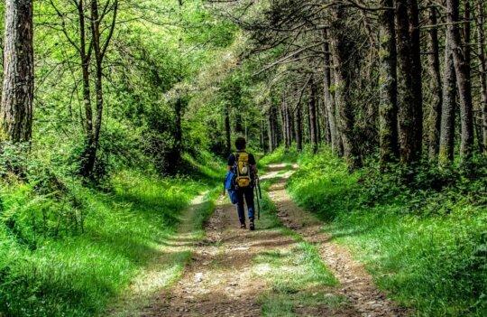 Ruta del Alba en Asturias: caminata primaveral de gran belleza