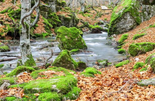 Ruta Foces del río Infierno: camina por el valle del río inferno