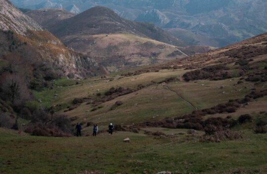 Ruta por el Monte Joyadongu: trekking para principiantes